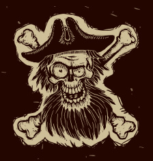 stock-illustration-25300899-black-pirate-skull-in-a-cocked-hat