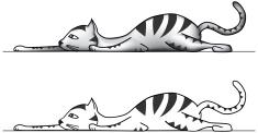 stock-illustration-1032971-stalking-cat